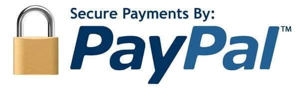 secure paypal icon