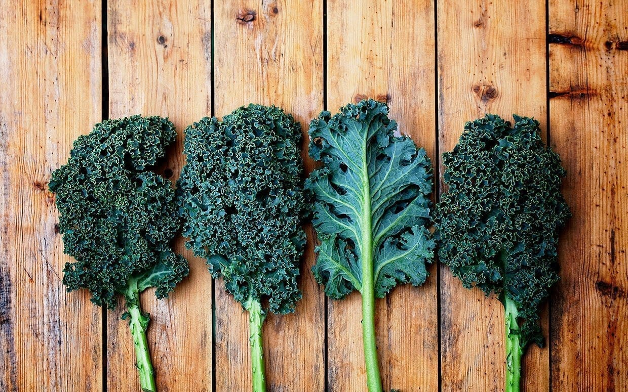 All hail King Kale! 5 must-try recipes