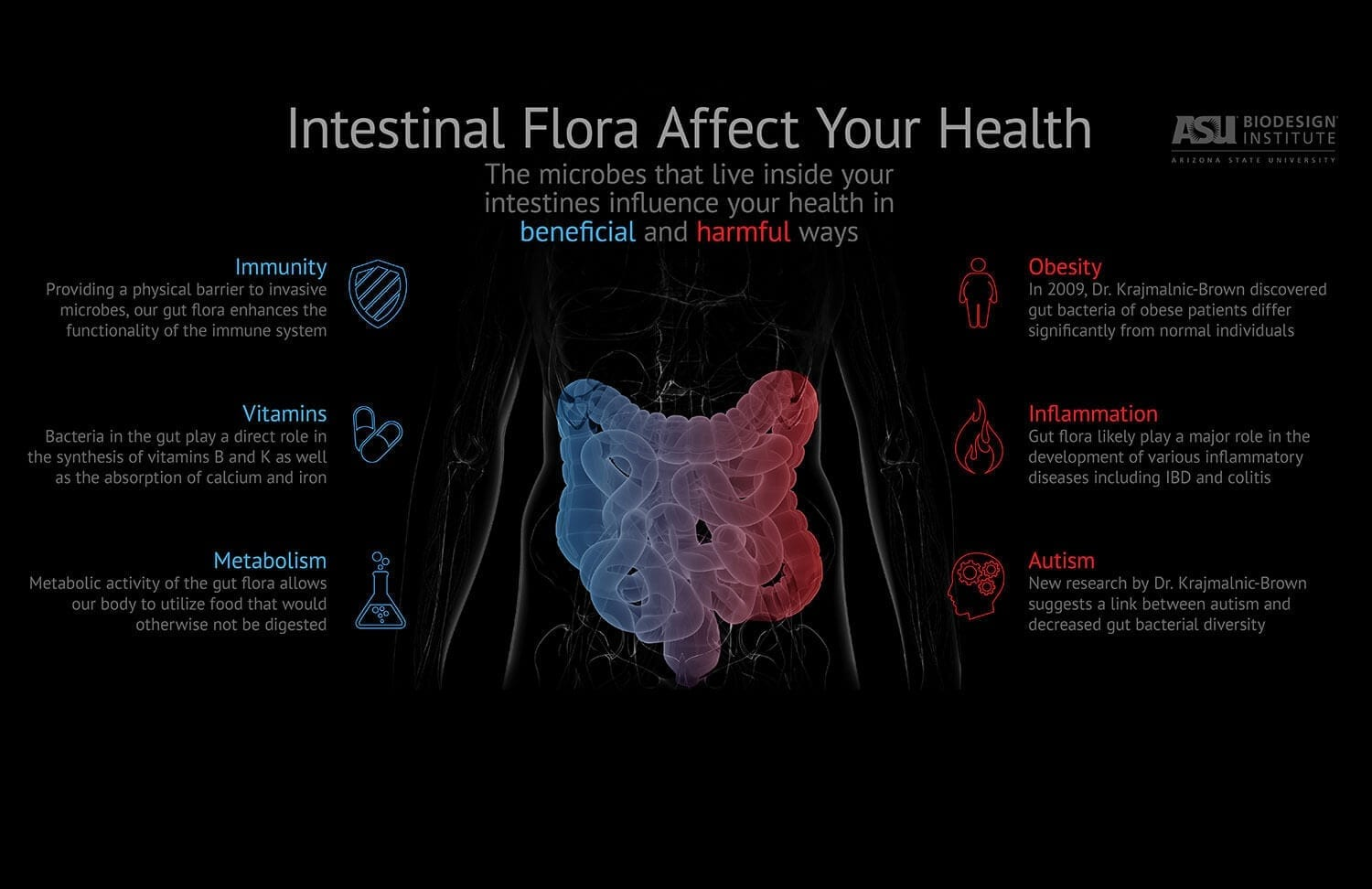 Top 7 foods that look after your gut flora